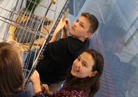Schüler dekorieren Schaufenster